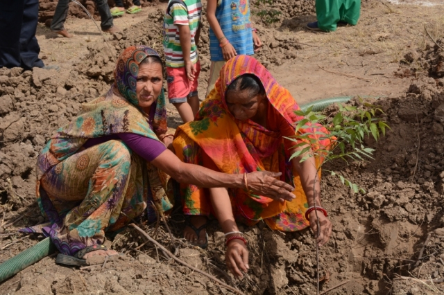 Neem sapling plantation by Village Women